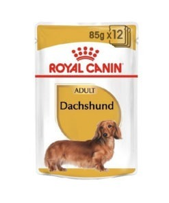 Royal Canin Adult Dachshund