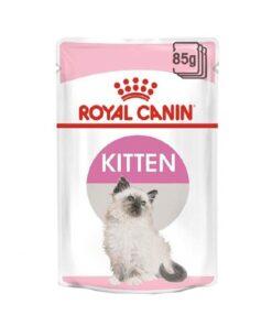 Royal Canin Kitten - Gravy