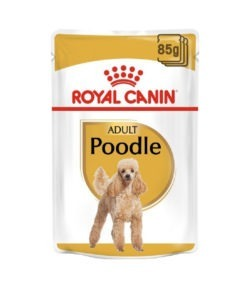 Royal Canin - Adult Poodle Wet Food