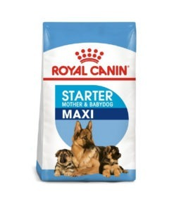 Royal Canin - Size Health Nutrition Maxi Starter
