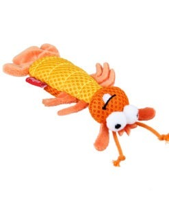 Dental Mesh Shrimp Orange