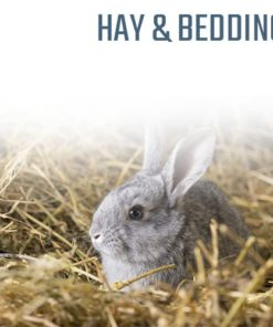 Hay and Bedding